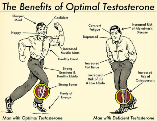 Benefits of Optimal Testosterone